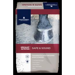 SAFE & SOUND DODSON & HORRELL